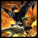 Compy and Microraptor update